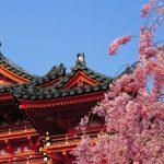 Top lucruri de facut in Tokyo, Japonia